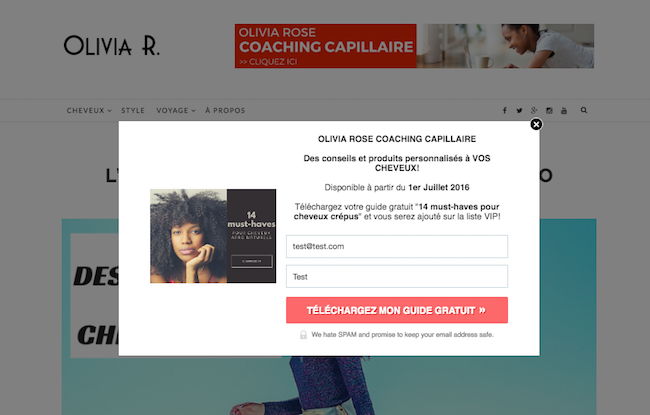 Leadbox pop-up